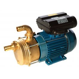35 - 260 L/min Surface Transfer Pump (ENM20 110V)